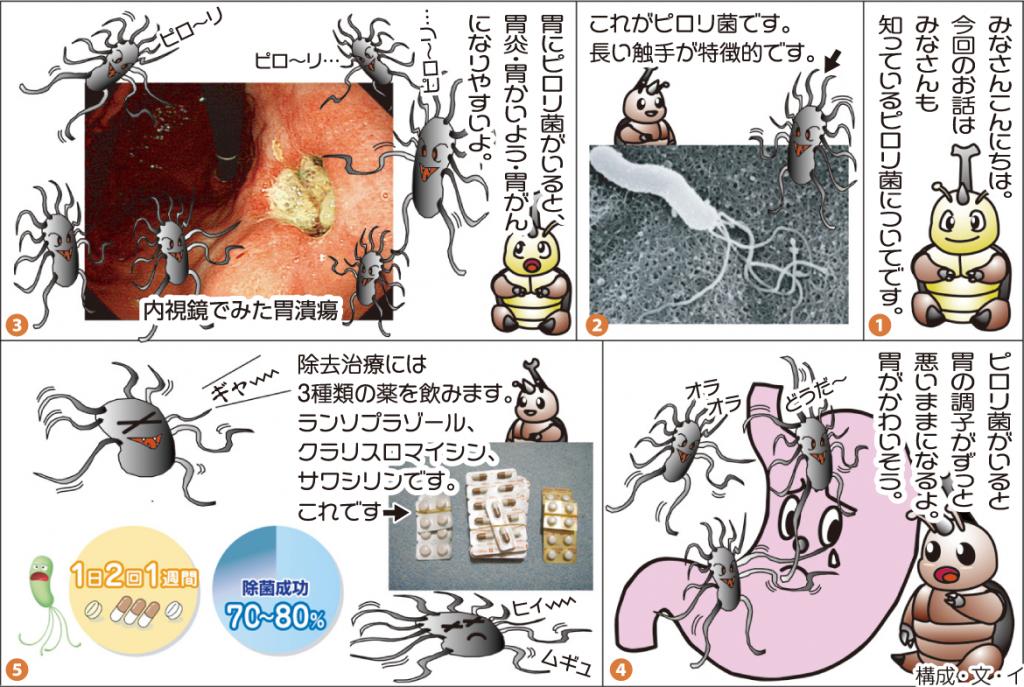 7月ピロリ菌のお話